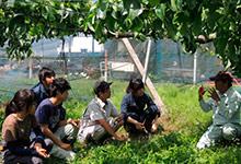 鯉淵学園農業栄養専門学校